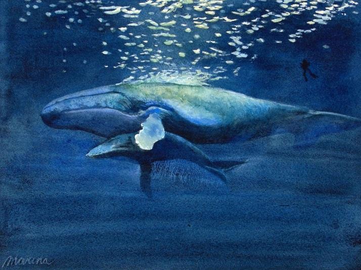 Marina Kulik - Blue Whales