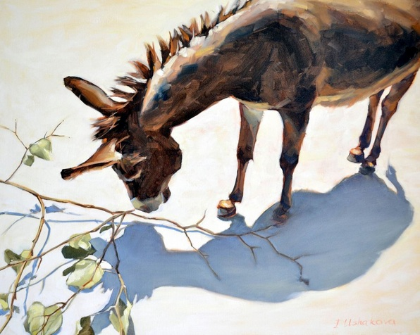 Irina Ushakova - Donkey and its shadow