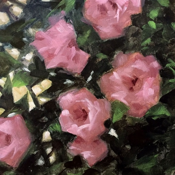 Rod Norman - Pink Roses
