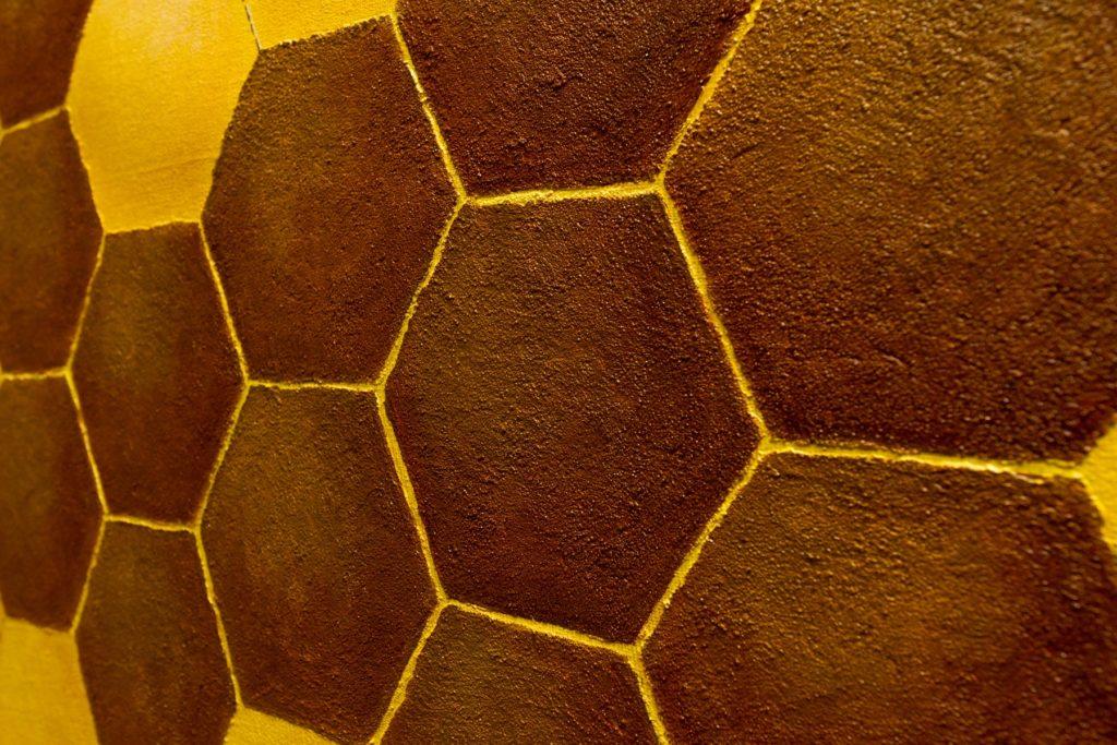 Yuliia Ustymenko - Honey. Detail