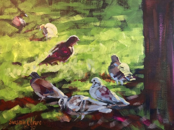 Susan Clare - Pigeons in the Park