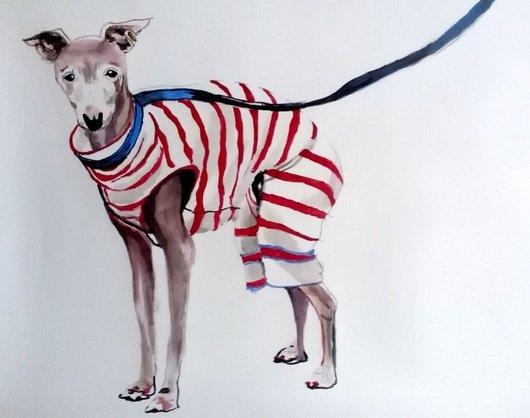soso-kumsiashvili-dog-2017