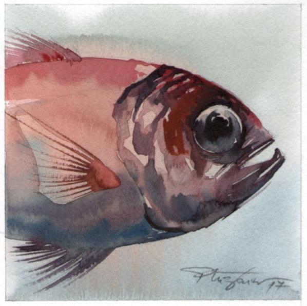 Milan Pluzarev - A fish