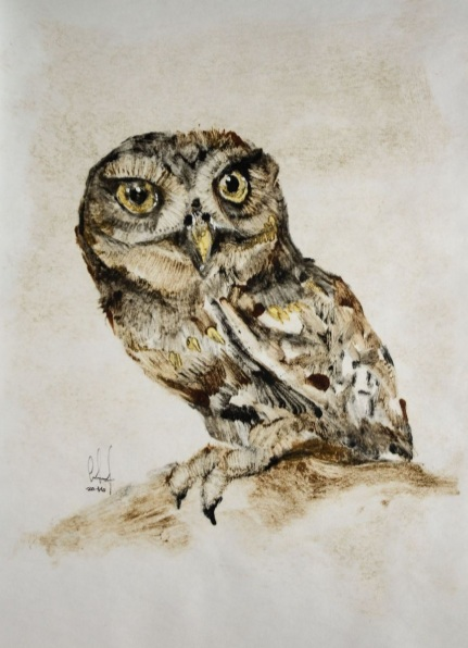 Ashot Sardaryan - Owl_3