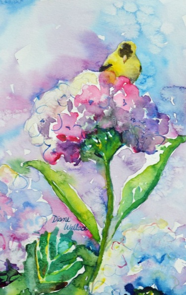 Diane Wallace - Goldfinch on Hydrangea