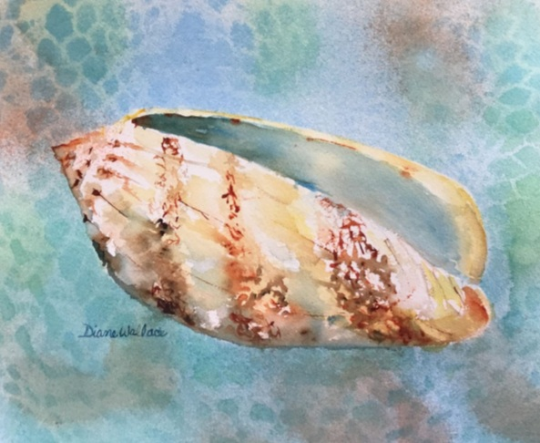 Diane Wallace - Olive Shell
