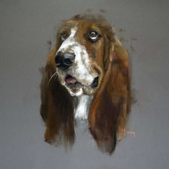 Matt Foy - Basset Hound Sketch