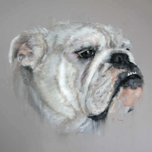 Matt Foy - Bulldog in pastel