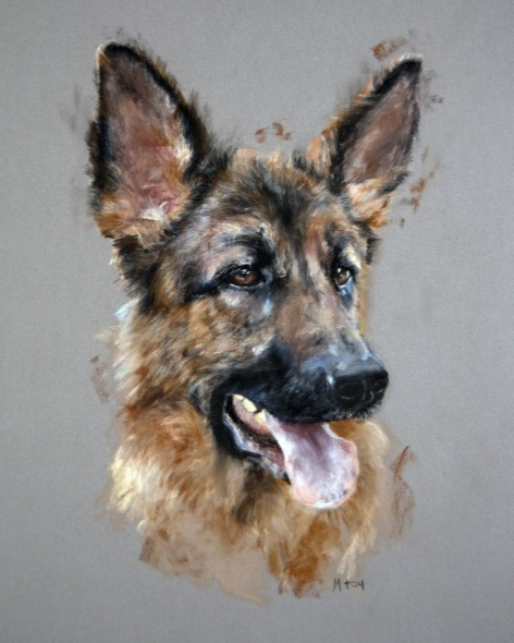 Matt Foy - German Shepherd in pastel