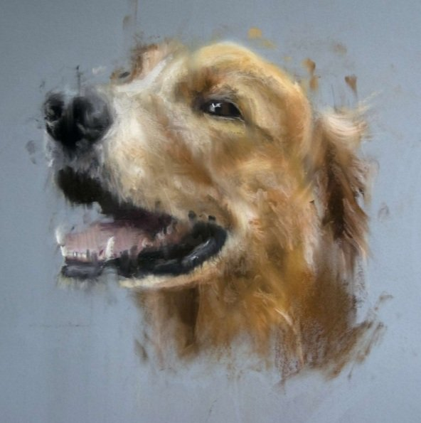 Matt-Foy-Retriever-study-in-pastel