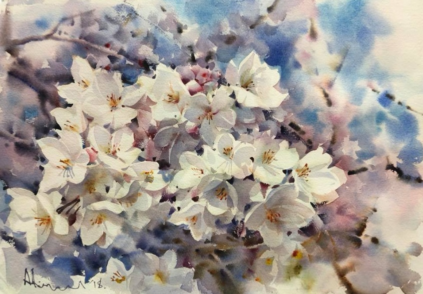 Adisorn Pornsirikarn - Sakura