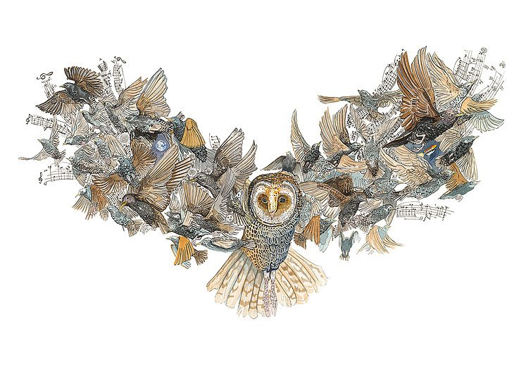Olivier Marc Thomas Leger - Barn Owl