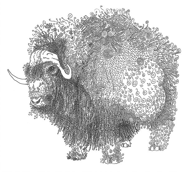 Olivier Marc Thomas Leger - Musk Ox